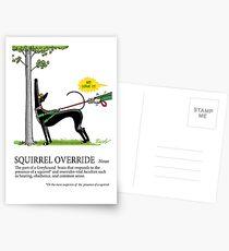 Greyhound Glossar: Eichhörnchen überschreiben Postkarten