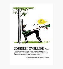 Greyhound Glossary: Squirrel Override Photographic Print