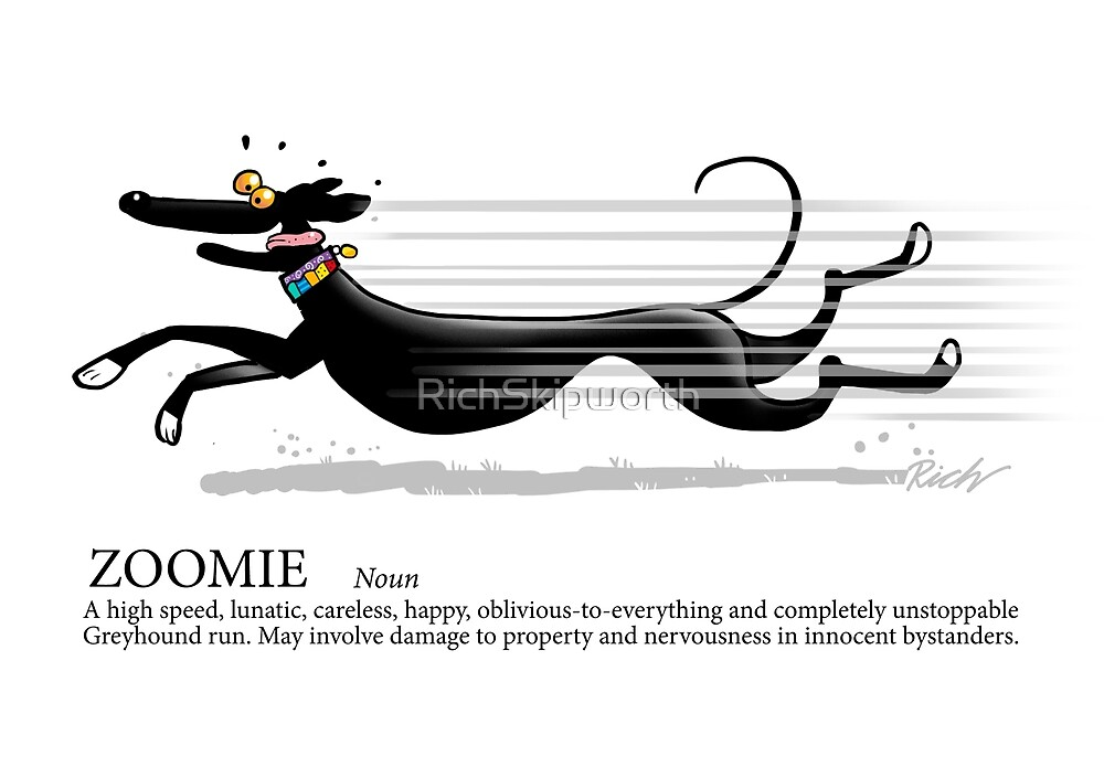 Greyhound Glossary: Zoomie by RichSkipworth
