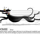 Greyhound Glossary: Zoomie by RichSkipworth