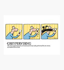 Greyhound Glossary: Greypervising Photographic Print