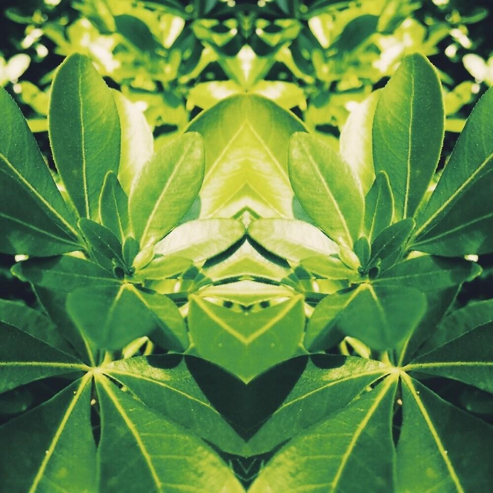 Botanical by mrsaraneae