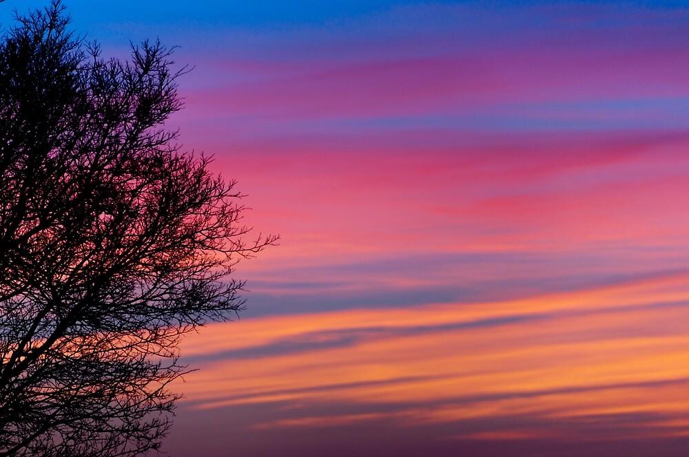 Pastel Sunset by Joshua McMahon