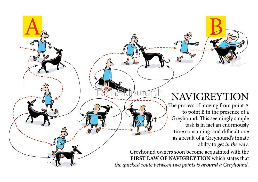 Greyhound Glossary: Navigreytion by RichSkipworth