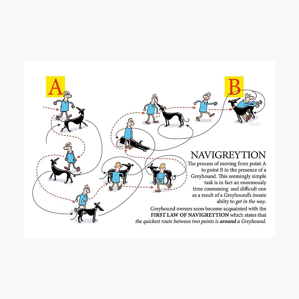 Greyary Greyhound: Navigreytion Lámina fotográfica