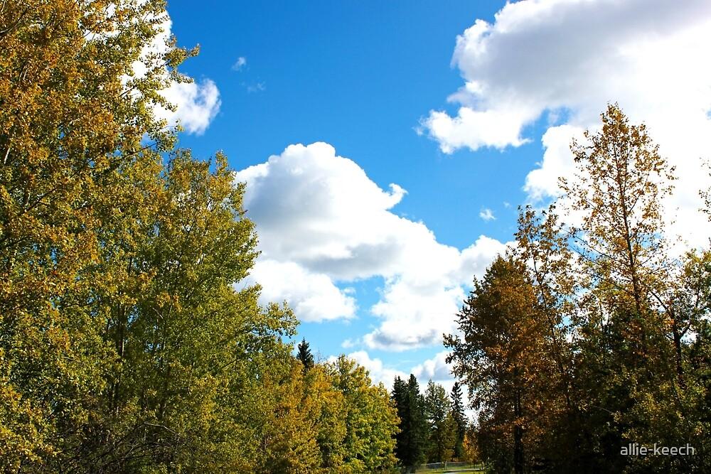 Autumn Skies by allie-keech