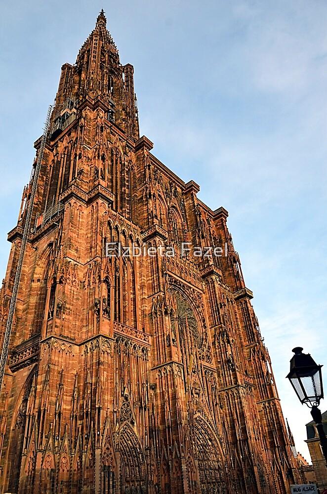 Strasbourg Cathedral in sunset light, France by Elzbieta Fazel
