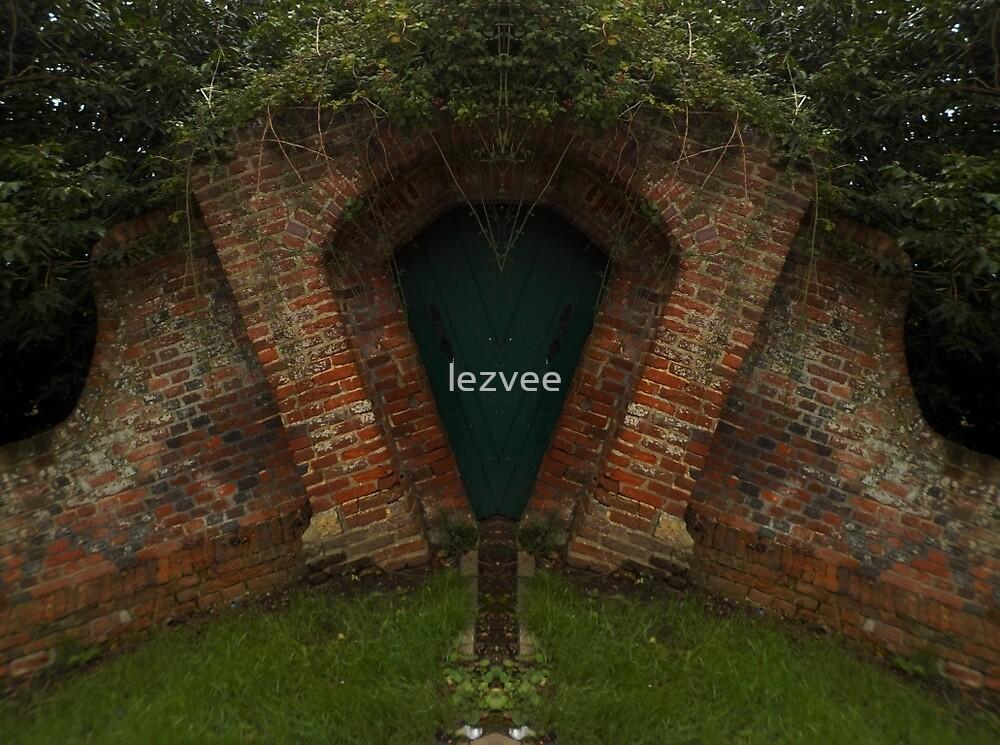 Tear Drop Door by lezvee