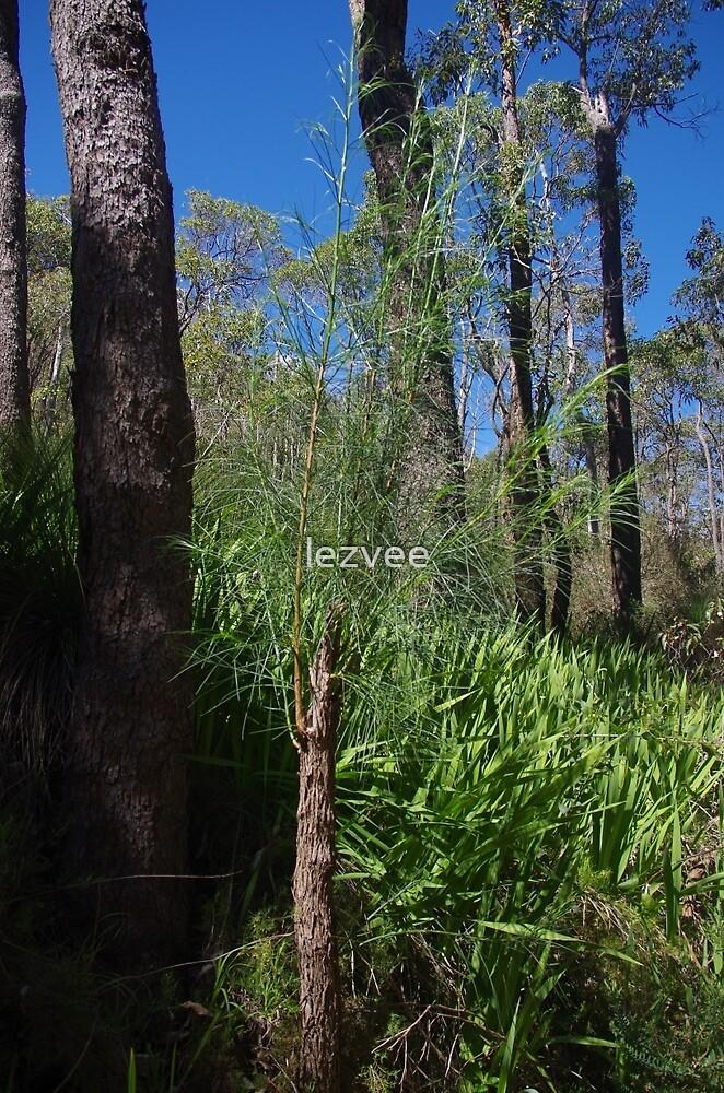 Serpentine Bush by lezvee