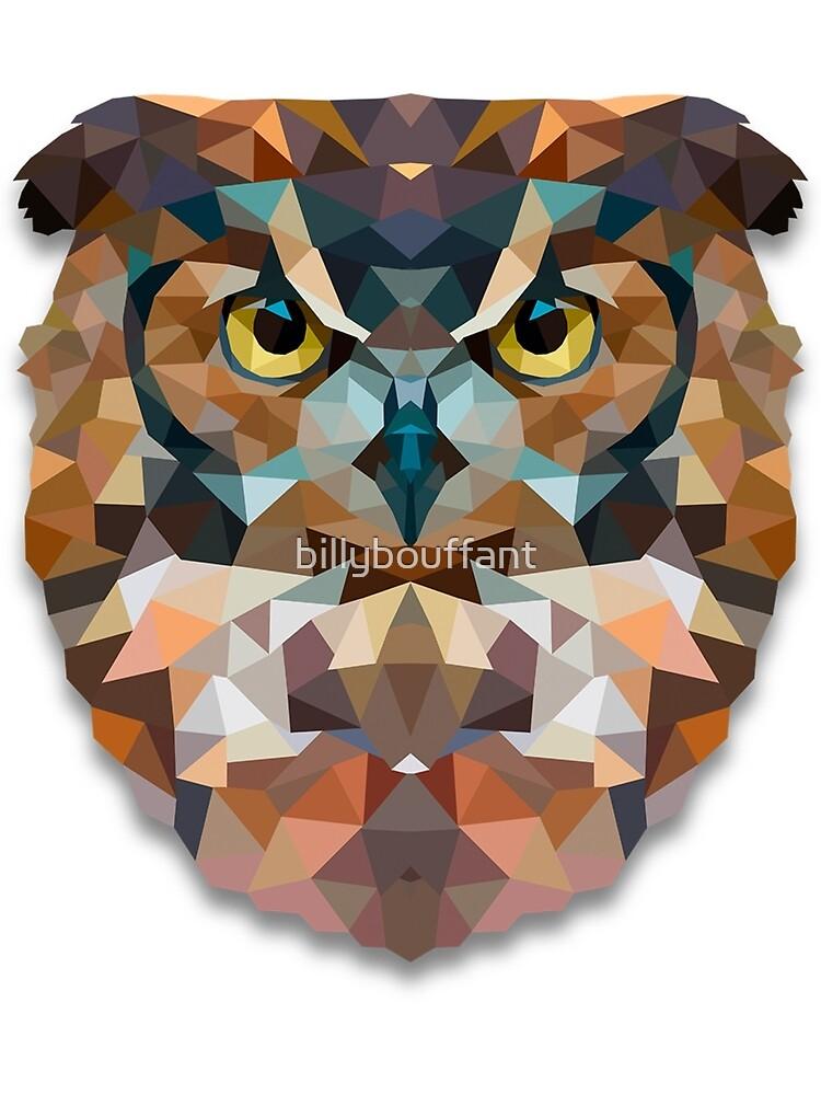 Owl by billybouffant