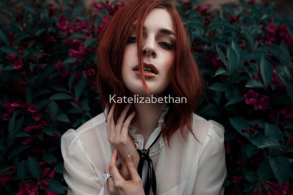 Rosa by Katelizabethan