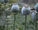 Poppy seeds with textured background and family quote.  by Sandra Foster