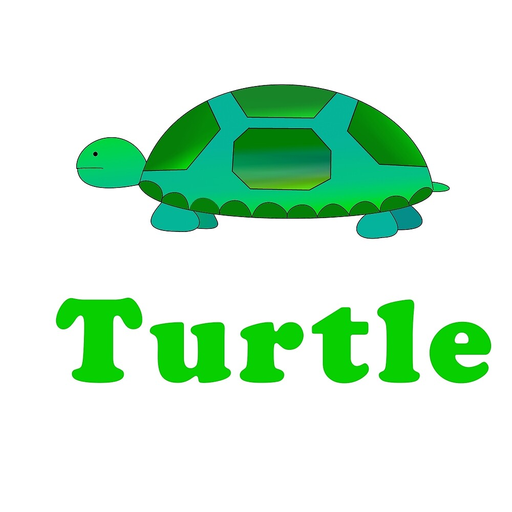 Turtle by lecase19