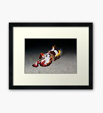 Master of Disguise Framed Print