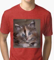 Portrait of Sushi Tri-blend T-Shirt