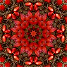 Kaleidoscope - Red Seeds #1 by Lyle Hatch