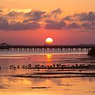 Sunset in Corolla NC by Amy Jackson