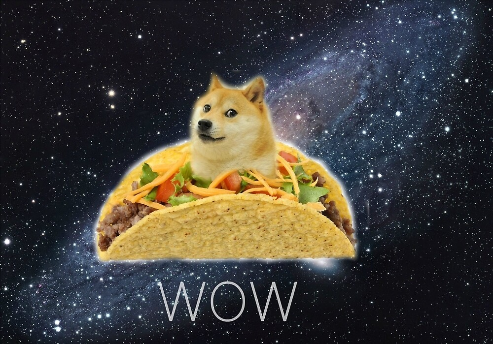 Doge Space Taco by FuriousColors