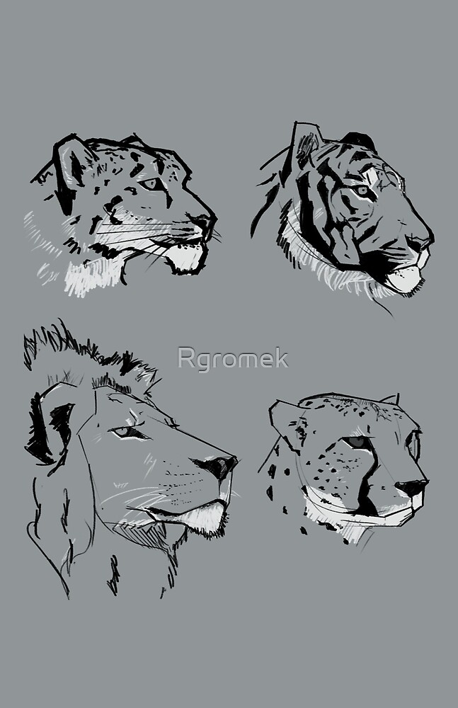 Big Cats by Rgromek