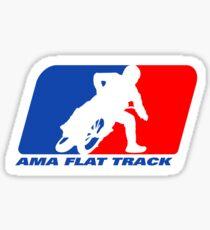 Ama Flat Track Sticker