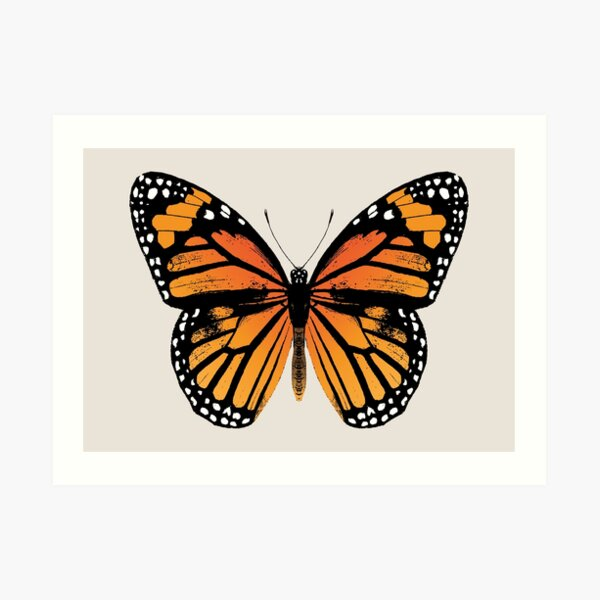 Monarch Butterfly | Vintage Butterflies |  Art Print