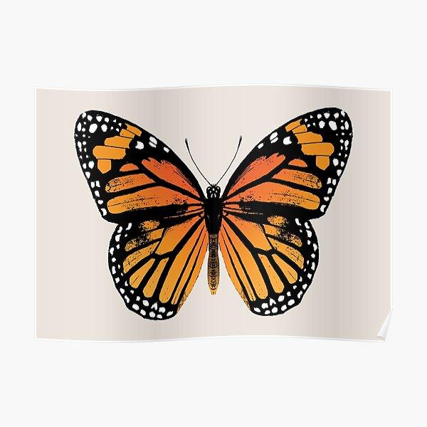Monarch Butterfly | Vintage Butterflies |  Poster