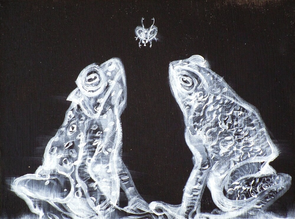 TWO FROGS,ONE FLY by lautir
