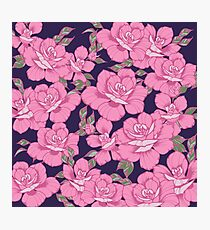 Pink Roses Photographic Print