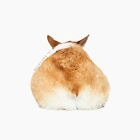 Corgi Butt by kmkmonkay
