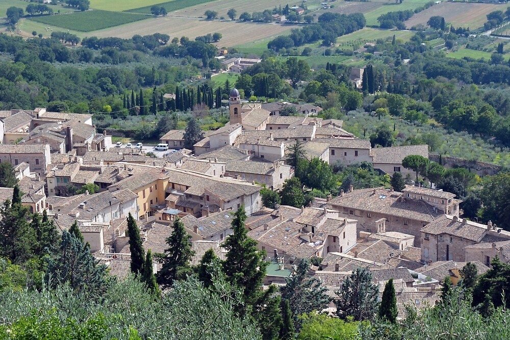 Aerial view of Assisi by oanaunciuleanu