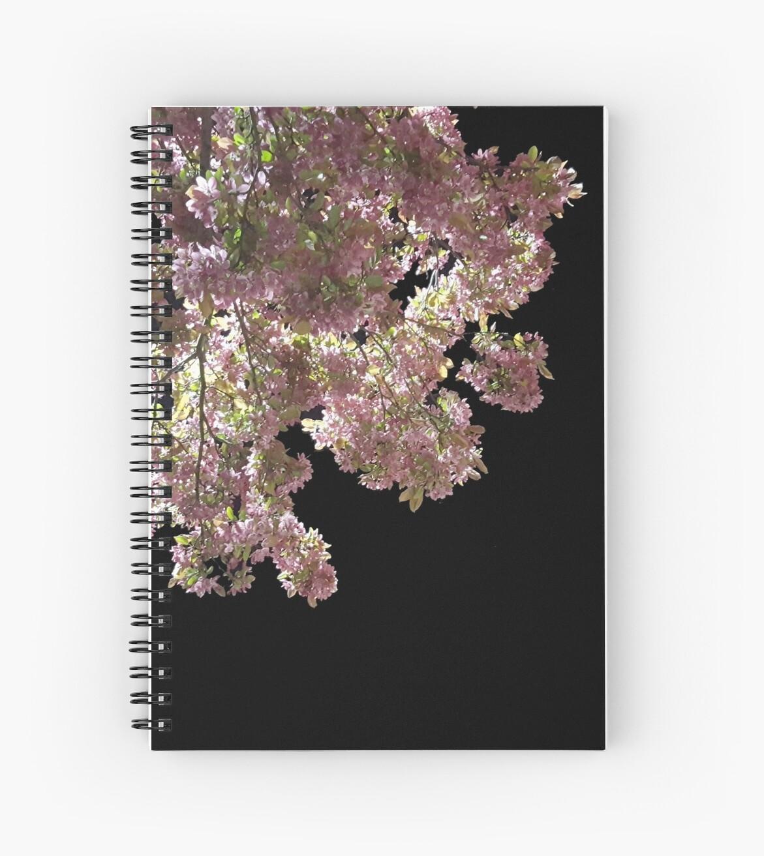 Cherry Blossoms in the Dark by pumpri