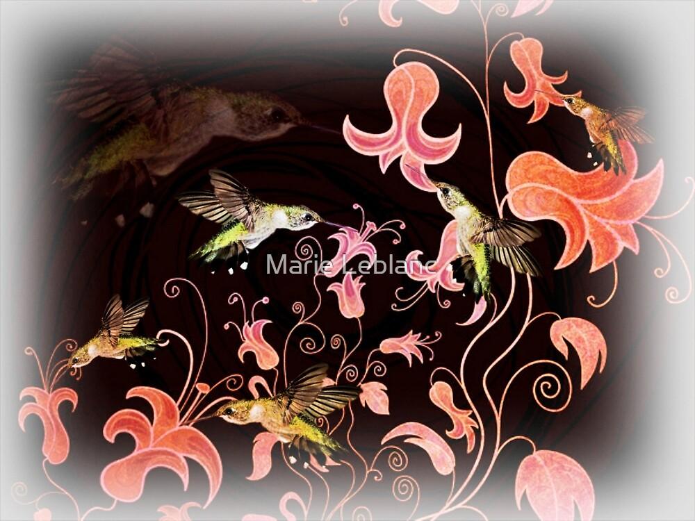 HUMMINGBIRDS by Marie Leblanc