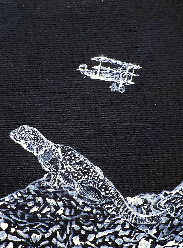 LIZARD AND THE RED BARON by lautir