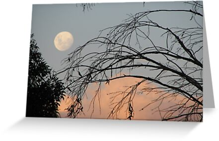 Early Moon Rising by Annsilk