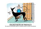Greyhound Glossary: Ingreysion of Privacy by RichSkipworth