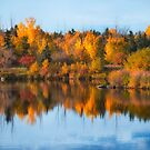 Seasonal Reflection by IanMcGregor