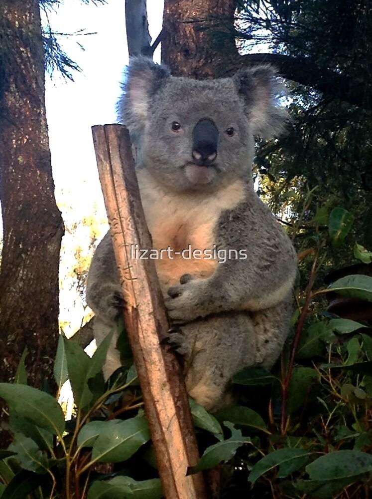 Koala by lizart-designs