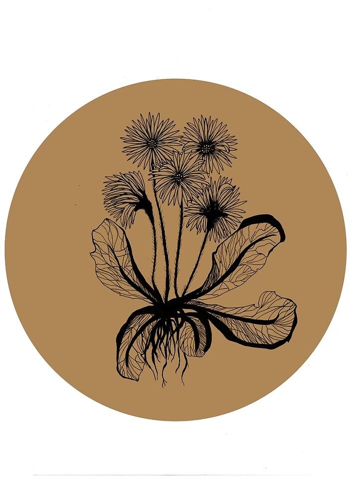 Flowers by Annemone