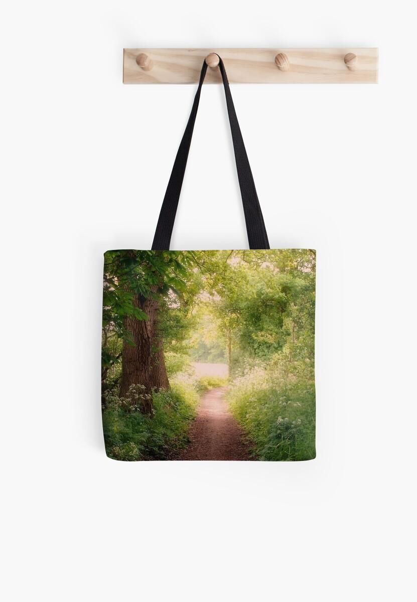 Follow my dreams!! Path to Fairyland!  by ienemien