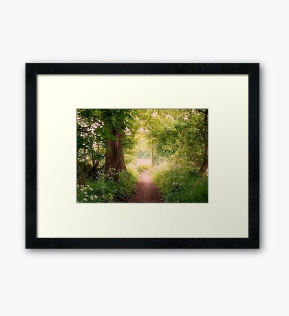 Follow my dreams!! Path to Fairyland!  Framed Print