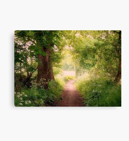 Follow my dreams!! Path to Fairyland!  Canvas Print