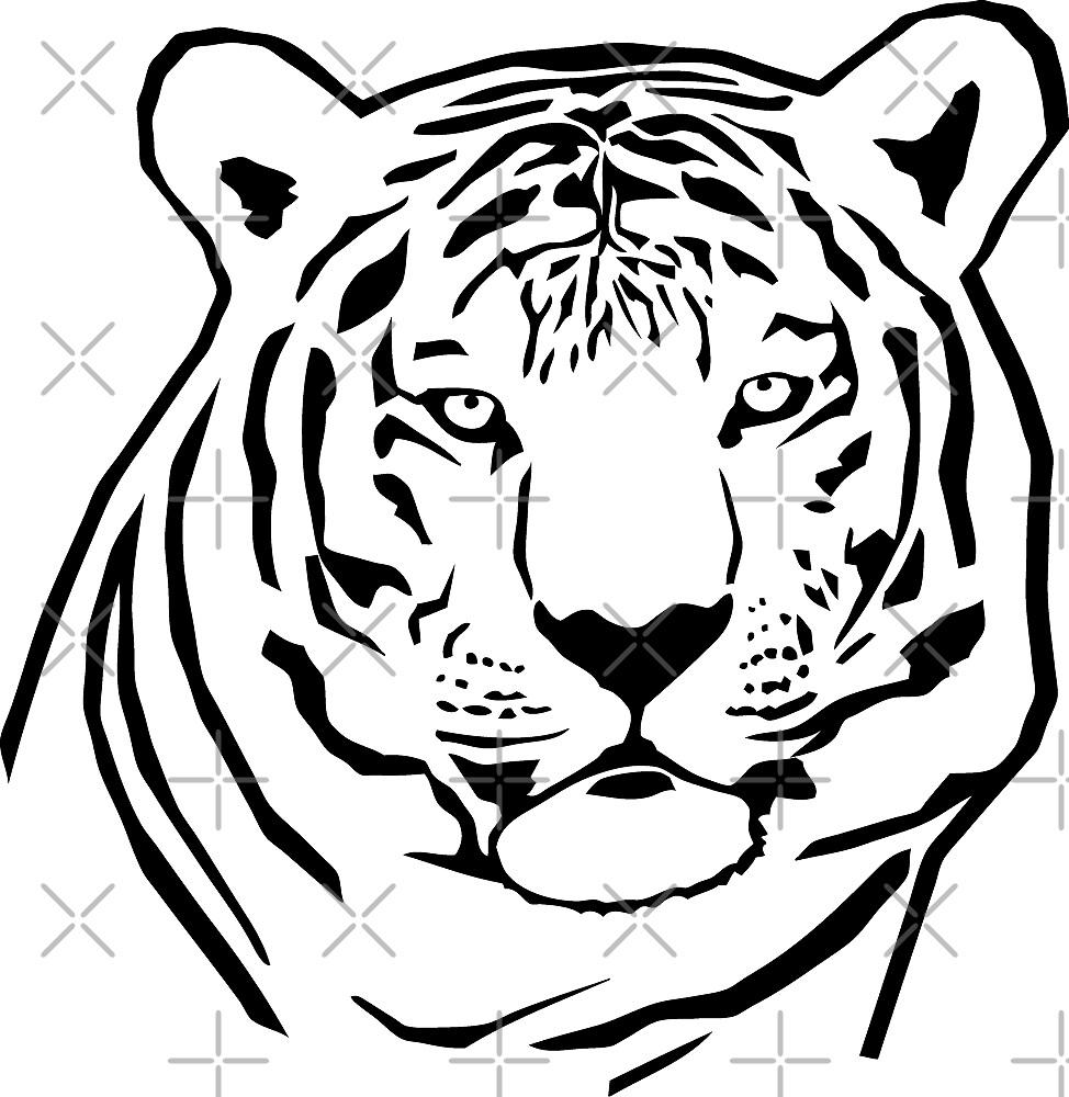 Tiger by Port-Stevens