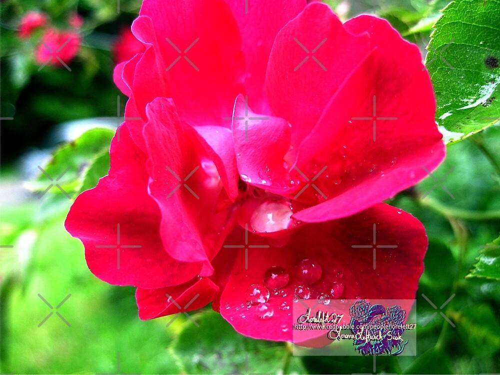 tears of a rose by LoreLeft27