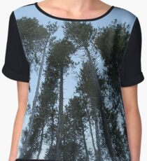 Cypress Hills  Chiffon Top