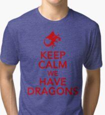 Keep Calm We Have Dragons Tri-blend T-Shirt