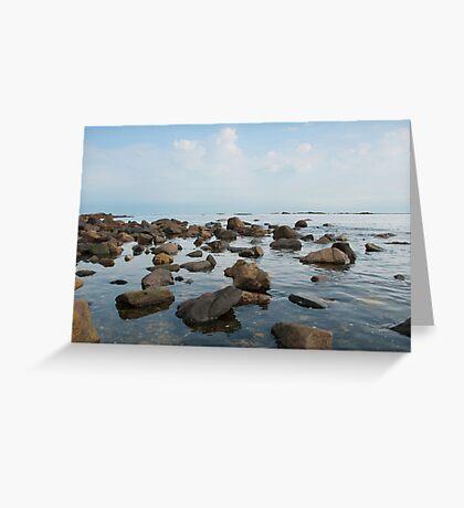 Tide Pool Greeting Card