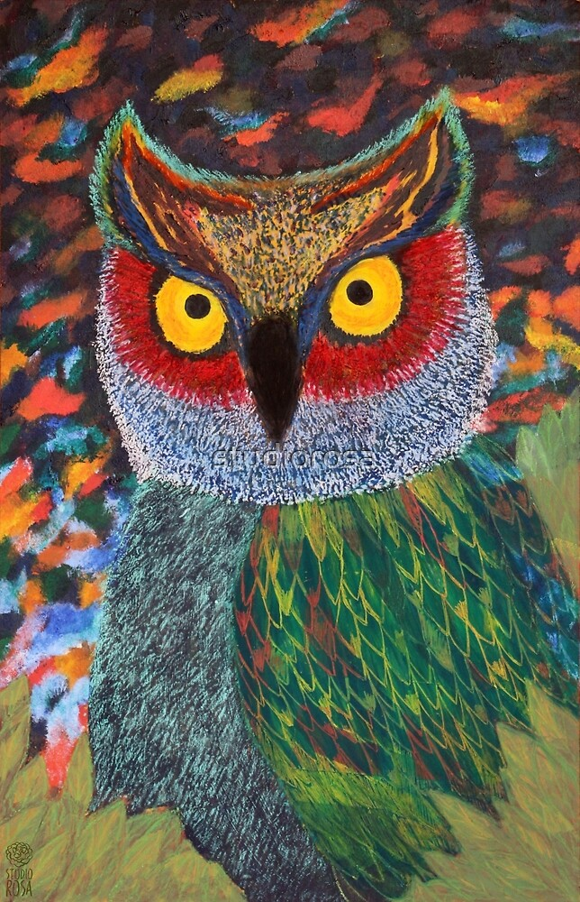 Owl's big eyes by studiorosa