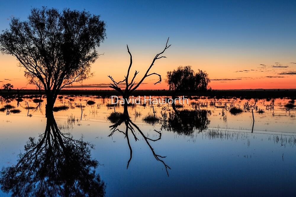 The Colours of Australia  by David Haworth