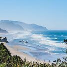 Cannon Beach by Susan Vinson