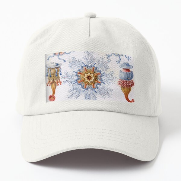 Haeckel Siphonophorae. Siphonophorae is an order of Hydrozoans, a class of marine organisms belonging to the phylum Cnidaria Dad Hat